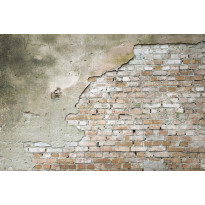 Kuvatapetti Dimex Grunge Wall, 375x250cm