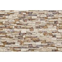 Kuvatapetti Dimex Stone Wall, 375x250cm