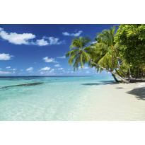 Kuvatapetti Dimex Paradise Beach, 375x250cm