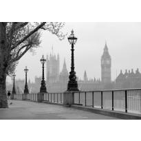 Valokuvatapetti 00142 London Fog 8-osainen 366x254 cm