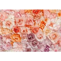 Valokuvatapetti 00147 Flowers 8-osainen 366x254 cm