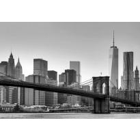 Valokuvatapetti 00149 New York 8-osainen 366x254 cm