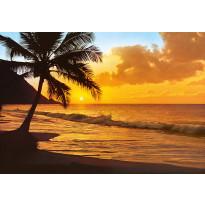 Valokuvatapetti 00218 Pacific Sunset 8-osainen 366x254cm