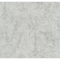 Tapetti AM-Walls Fashion for Walls 02462-10 0,53x10,05 m, hopea