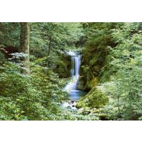 Valokuvatapetti 00279 Waterfall in Spring 8-osainen 366x254cm