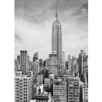 Valokuvatapetti 00310 The Empire State 4-osainen 183x254 cm