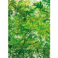 Valokuvatapetti 00372 Bamboo 4-osainen 183x254cm