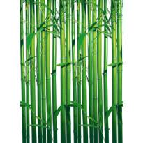 Valokuvatapetti 00421 Bamboo 4-osainen 183x254 cm