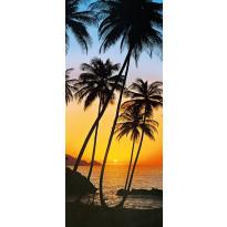 Ovitapetti 00529 Sunny Palms 86x200cm