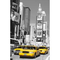 Juliste Giant Art 00650 Times Square 115x175cm