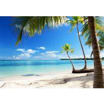 Valokuvatapetti 00954 Caribbean Sea 8-osainen non-woven 366x254cm