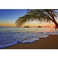 Valokuvatapetti 00955 Pacific Sunrise 8-osainen non-woven 366x254cm