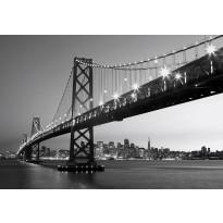 Valokuvatapetti 00958 San Fransisco Skyline 8-osainen non-woven 366x254cm