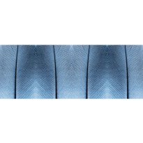 Valokuvatapetti Quattro Feather 8-osainen 372x280cm