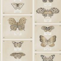 Tapetti Papilio 97801 0,53x10,05 m ruskea non-woven