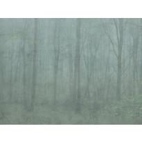 Skog 622-08