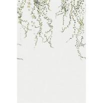 Aralia harmaa/vihreä 640-04