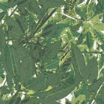 Belle 5337-3 vihreä