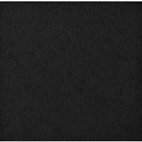 Pinta musta