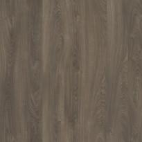 Laminaatti Tarkett Woodstock Grey Mocha Sherwood, 1-sauva, ruskea luonnollinen tumma (8119289)