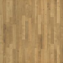 Laminaatti Tarkett, SoundLogic, Brushed Oak, 3-sauva, luonnollinen
