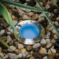 Lattiavalon lasi Special MiniPlus, sininen