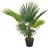 Tekokasvi palmu ruukulla vihreä 70 cm