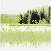 Pöytätabletti Vallila Hiljaisuus, 37x37cm, vihreä