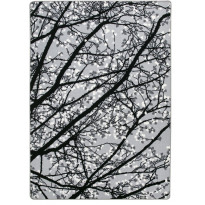 Matto Vallila Pihapuut, 160x230cm, harmaa
