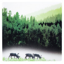 Pöytätabletti Vallila Kuru, 37x37cm, vihreä
