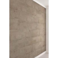 Seinäkorkki Ipocork Roots Malta Platinum, 600 x 300 mm