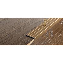 Porraskulmalista Progress Profiles Prowalk, 2,7m, 25mm, 20mm, ruuvikiinnitettävä, pronssi