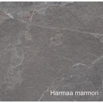 Laminaattitaso, 4100x600x30mm, eri värejä
