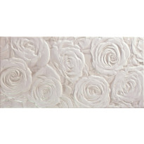 EH Eden Jet Blanco Decor 25x50cm