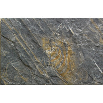 EB Valira Negro 30,2x45,8cm