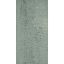 PPA Zeus Cinza cp36105 30x60cm, kiillotettu